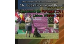 Rottweiler. Ch. Duda From Royal Breed.