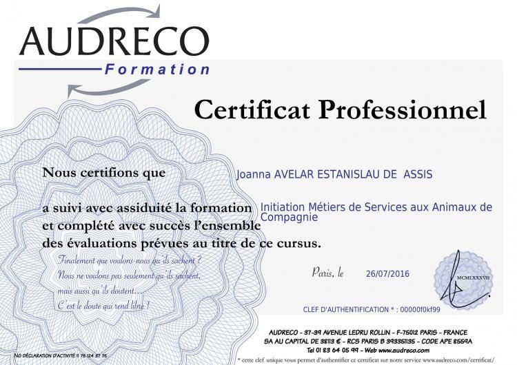 Uno de nuestros certificados profesionales