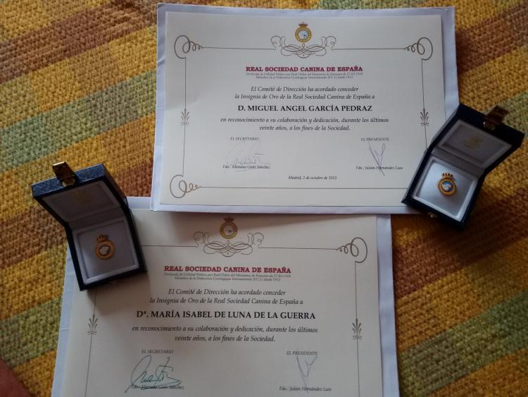 Diplomas e Insignias R.S.C.E. a los 20 años.