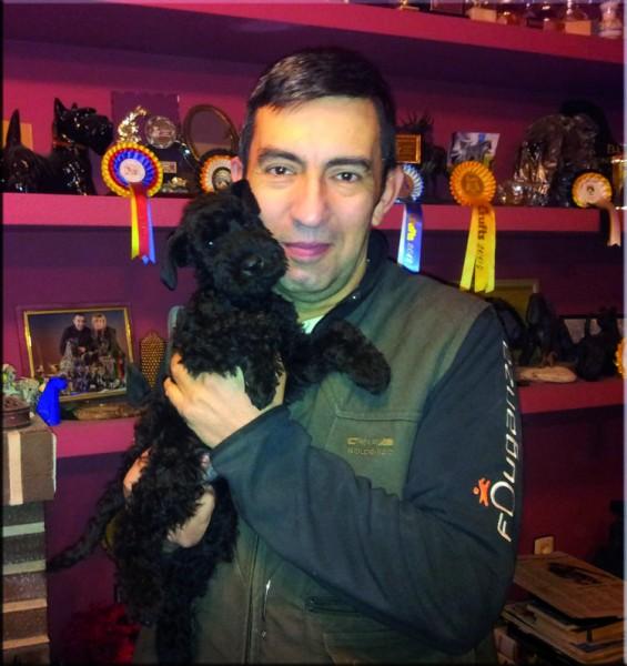 Kerry Blue Terrier. Miguel con Zippo