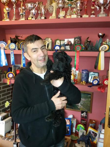 Kerry Blue Terrier. Northbound Hymn To La Cadiera a su llegada.