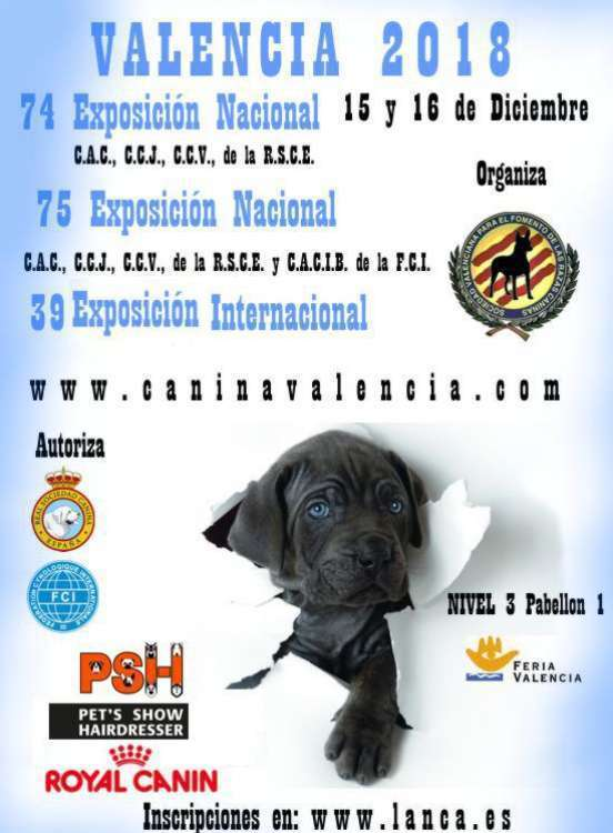 EXPOSITION CANINE INTERNATIONALE (CACS   CACIB)