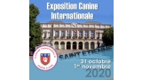 Belleza. EXPOSITION CANINE INTERNATIONALE (CACS   CACIB) (Loire   Francia)