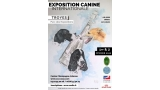 Belleza. EXPOSITION CANINE INTERNATIONALE (CACS   CACIB) (Aube   Francia)