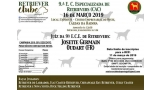 9.ª E. C. Especializada do Retriever C.P. (exceto Golden Retriever) (CAC)